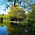 Autumnal reflection