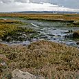 Low tide on the mudflats