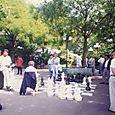 Swiss Chess