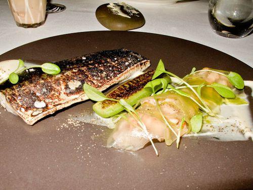 Mackerel & shrimps