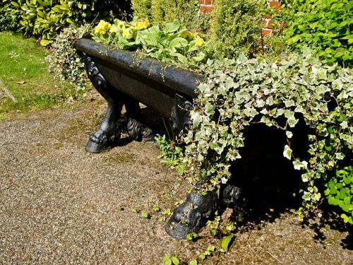 Ivy trough