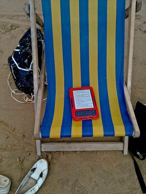 Kindle on deckchair