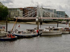 Albert Bridge moorings
