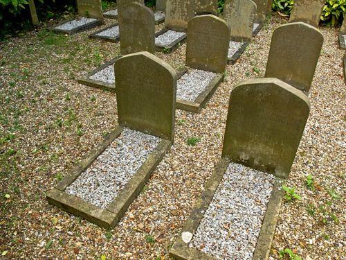 Pets' graveyard