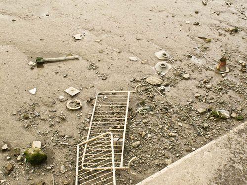 Detritus in mud
