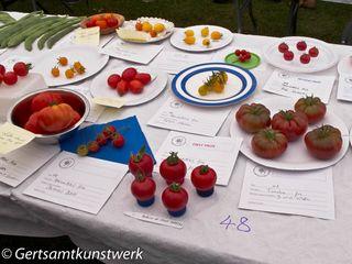 5 tomatoes