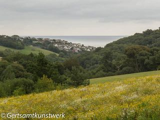 Mevagissey View