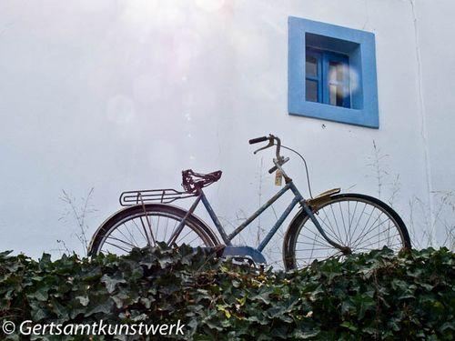 Zia bike
