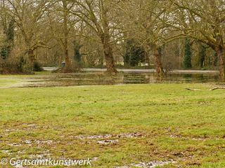 Bedford Hill Flood