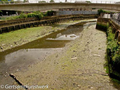 Low tide creek