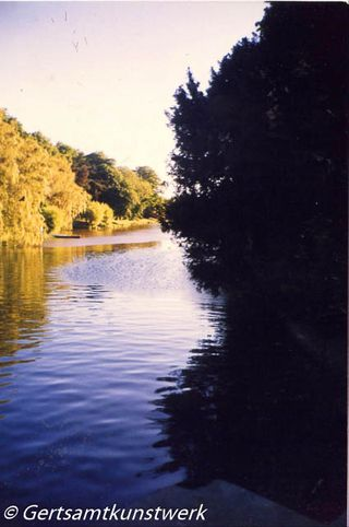 Lake evening in June