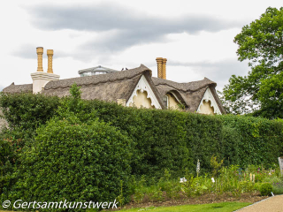 Thatch at Pembroke Lodge June