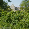 Priory ruin