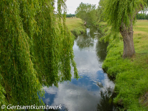 Beverley Brook June