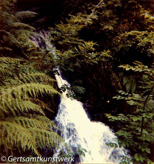 Morag Fairy Glen