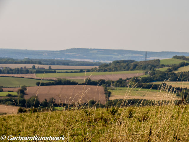 View over the Downs