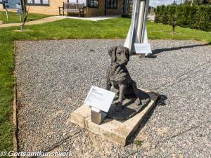 B.O.B the Squadron Dog