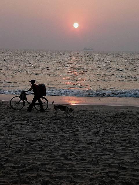 Boat, bike, dog