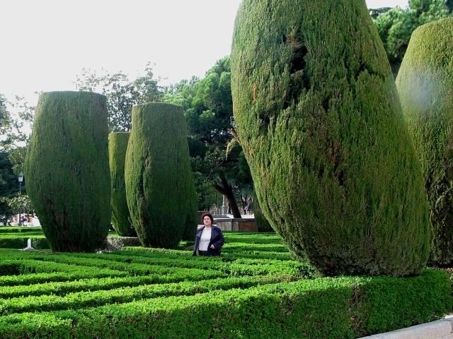 Lurker in hedgerow
