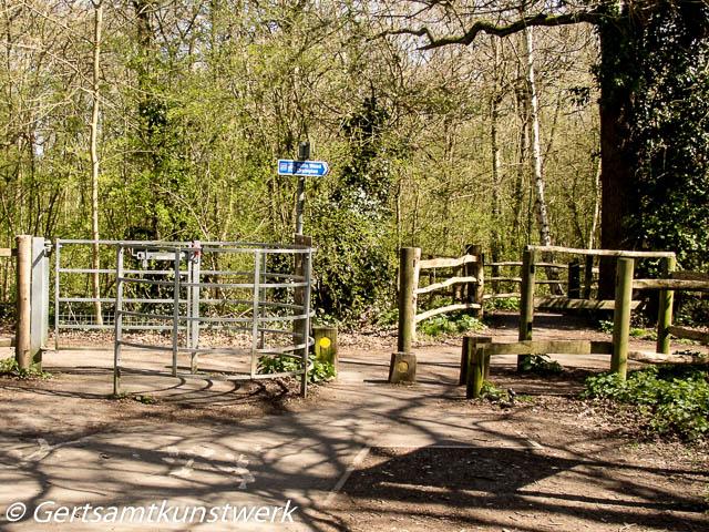 Stupid cycle gate