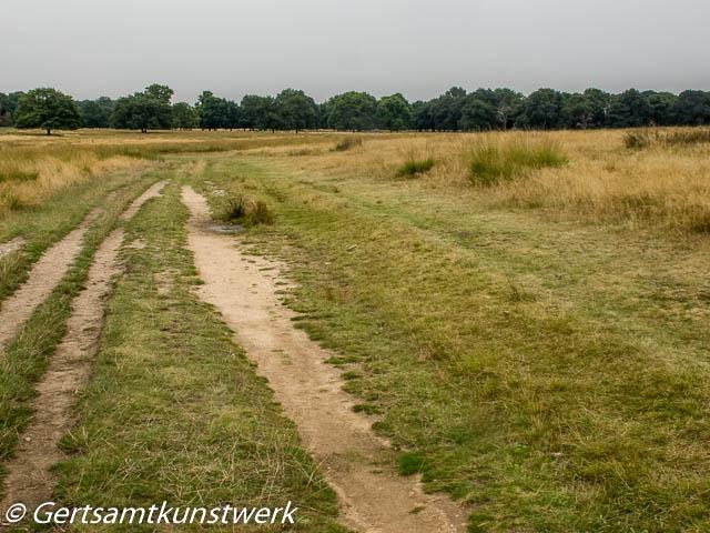 The slightly beaten path