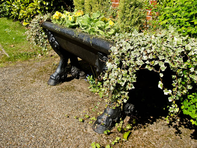 Ivy trough