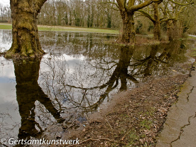 Tooting Puddle