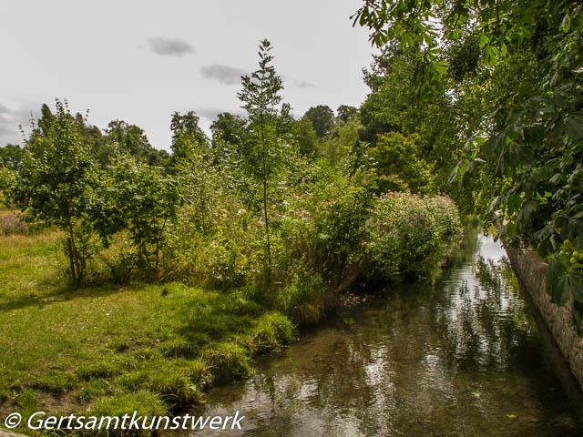 Wild banks